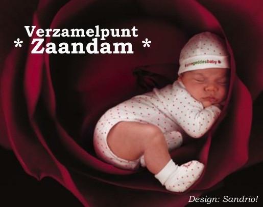 Vzp_zaandam